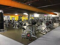 Xercise4less Gym Membership - £11.99 Per Month - NO ADMIN FEE - Edinburgh