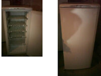 HOTPOINT FUTURE TALL FAST FREEZE FREEZER 51 INCHES HIGH (129cms) x 23.5 WIDE (59cms) PLZ RING ONLY
