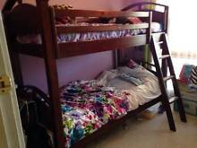BUNK BEDS - WOODEN Elderslie Camden Area Preview