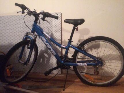 Avanti Spice girl's bike Lenah Valley Hobart City Preview