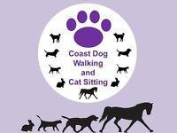 Dog Walking and Pet Sitting, friendly one to one service, Whitley Bay areas