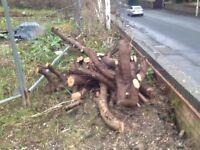 Free logs, firewood