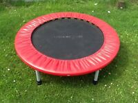 Great little mini trampoline. Fantastic for indoor exercise
