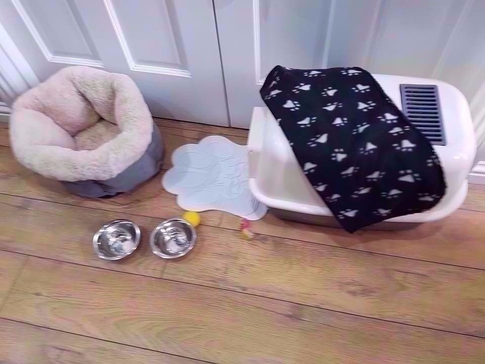 cat items enclosed litter tray,litter mat,luxury heavy quilted bed,blanket,2 steel dishes,few toys