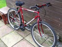 Bicycle men's Tornado £40