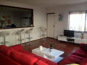 Room for Rent Leederville!! Leederville Vincent Area Preview
