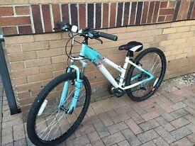 Ladies or girls Raleigh mountain bike