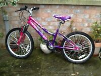 "Girls Raleigh bike 20"" wheel"