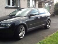 Audi A3TDI great condition with alloy wheels. Two owners,. Mot and taxed. Really clean vehicle.