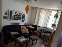 Friendly Social House Looking for New Housemate