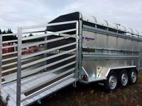 14ft Indespension triple axle livestock cattle trailer with gates - front flap - spare wheel - leds