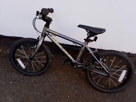 Raleigh performance bike (kids)