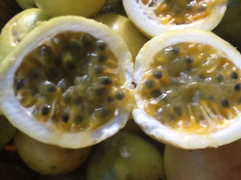 25 Organic Yellow  Passion  Fruit seeds from Florida