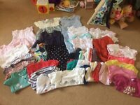 Baby girl clothing bundle 9-12 months