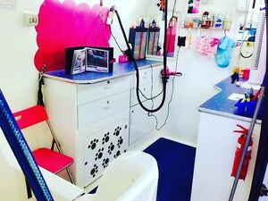 Mobile dog grooming salon for sale Ningi Caboolture Area Preview