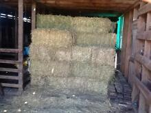 Hay for sale. Small Lucerne/Rye Squares East Gippsland Preview
