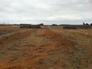 3 Acre Vacant Block in Sunlands, Waikerie SA Close to the Murray! Sunlands Loxton Waikerie Preview