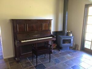 Free Piano Forest Glen Maroochydore Area Preview