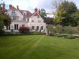 P M garden services