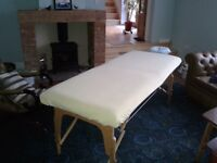 Massarge couch excellent condition portable