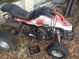 Off road buggy and quad Beenleigh Logan Area Preview