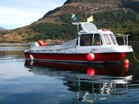 5.2 metre Pilot boat for sale
