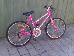 Pink 24' working mountain bke Noble Park Greater Dandenong Preview