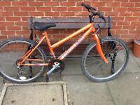 Teenage Moutain bike