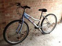 Bicycle 43cm frame
