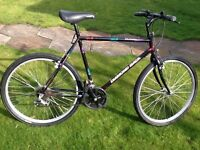 Diamondback Gents Cycle