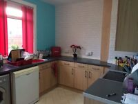 Large 3 bed end terrace in Maddiston - multi swap available