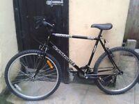 bike 15 speed