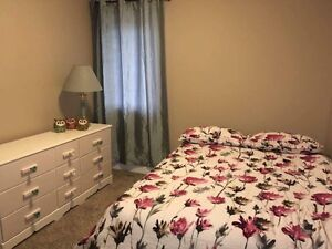 Room for Rent in Harbour Landing (Furnished, Utilities Included)