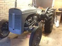 1953 Ferguson Tef 20