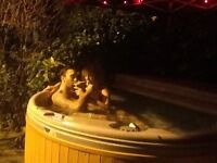 Easy and Affordable Hot Tub Hire £175