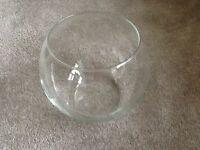 Fish bowl shape glass vase used