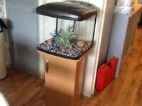Fish tank box 60 litres