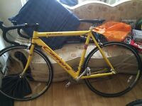 "Mens 20"" Carrera Road Bike £200"