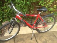 Raleigh Mantaray Mountain Bike