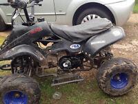 140cc pit bike quad