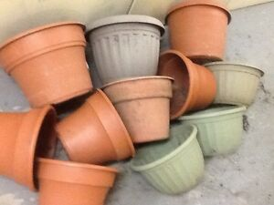 Seeding / flowers Pots