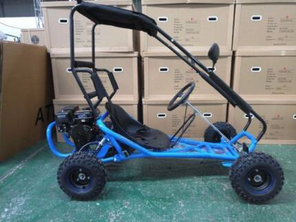 ZUMA SIZZLER 196cc 4 stroke Fun Kart with Roll Cage