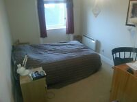 Spacious double bedroom in a luxury 2 bedroom city centre flat (St Andrews Square)-Aug / Sept