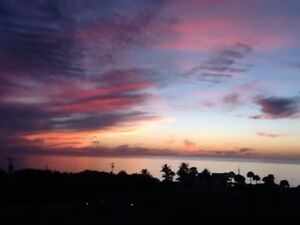FLORIDA NAPLES/BONITA BEACH - Beach Front Condo