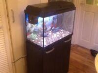 Fish tank con pleat set up