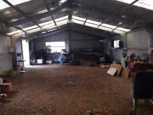 Hobby farm and large shed for sale Deepwater Glen Innes Area Preview