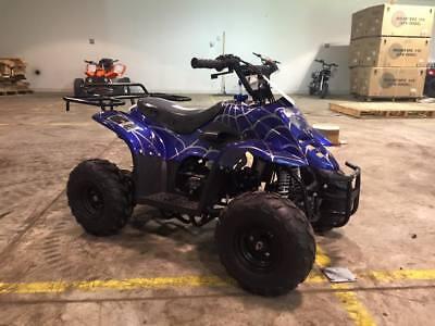 2017 New ATV kids 4 wheeler fully auto 110cc 2017 COOLSTER ATV-3050-C 110CC ATV