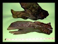 2 Large Pieces Bogwood
