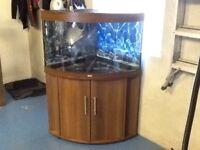 Jewel 180l aquarium for sale....£100