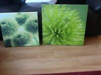 2 canvas pictures